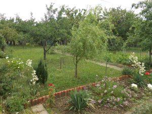 Zahrada s chatou v Modřicích